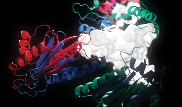 Vidéo de molécule en 3D pour l'Institut des Sciences du Calcul et des Données